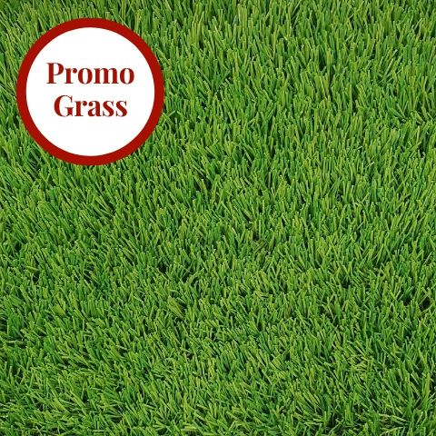 Mary Rose Elite 39mm Artificial Grass