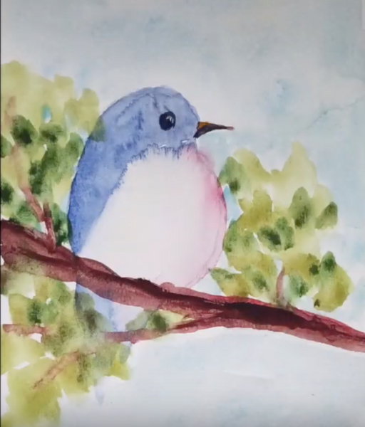 Watercolor Bird For 30 minutes