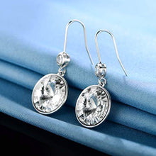 Load image into Gallery viewer, 18K White Gold Sparkle Crystal Round Drop Hook Earrings Crystals from Swarovski for Women Girl Party Jewelry Elegant Gifts