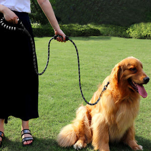 Dog Rope Leash, Reflective Dog Leashes for Medium and Large with Soft Comfortable Handle