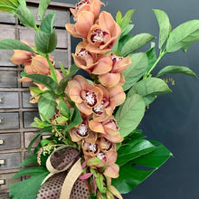Load image into Gallery viewer, Cymbidium Orchid Arrangement