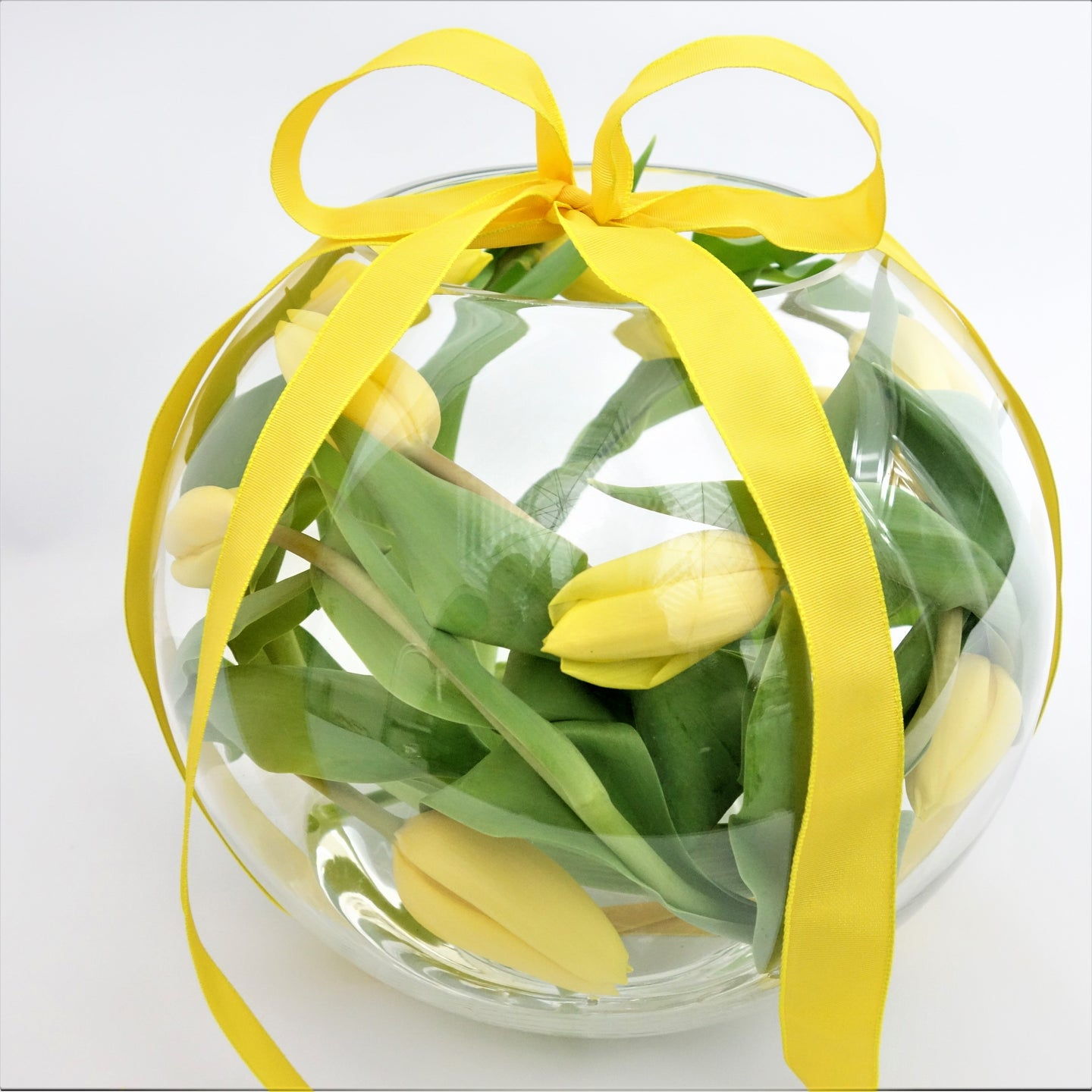 Tulip Fishbowl