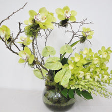 Load image into Gallery viewer, Ikebana Styled Orchids