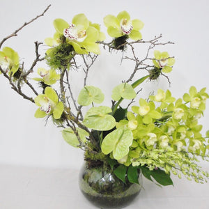 Ikebana Styled Orchids