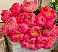 Load image into Gallery viewer, Peonies