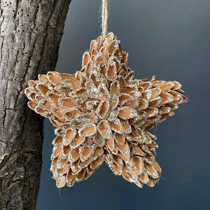 Wooden Glittered Star Hanging Ornament