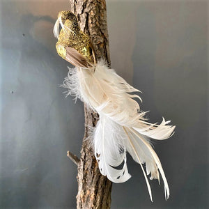 Gold and White Feathered Bird