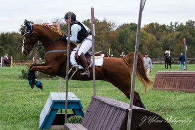Holly is an amateur eventer and blogger with her blog Marescara! In Indiana she events with her leased Saddlebred gelding.