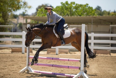 Susan Friedland-Smith - Saddle Seeks Horse