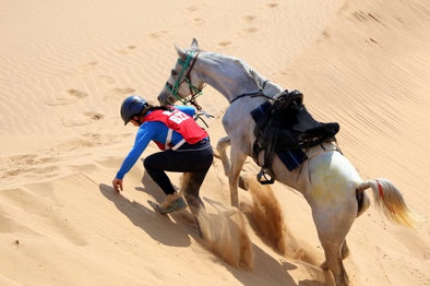 Camille Champagne, an endurance rider from Queensland The Gobi Desert Cup, Walvis Bay and African Championship.