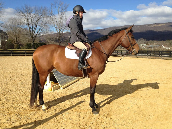 Ann Turnicky, blogger of Horse Country Chic about the lifestyle of the Virginia Horse Country, shares her favorites with Her Riding Habit