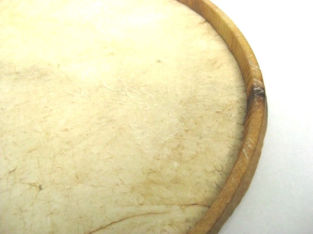 Zoomed in view of samba bass drum head. Goat skin with wooden hoop.