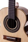 Cavaquinho by Rozini with electric pickups. Close view of cavaquinho.