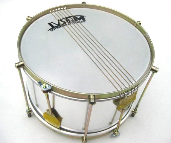 Top view of Brazilian drum, with two sets of six strings.