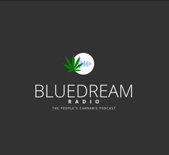blue-dream-radio