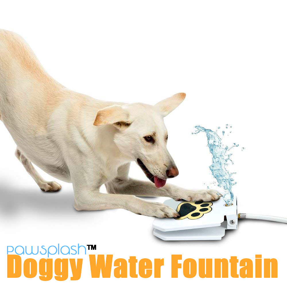 PawSplash™ Doggy Water Fountain