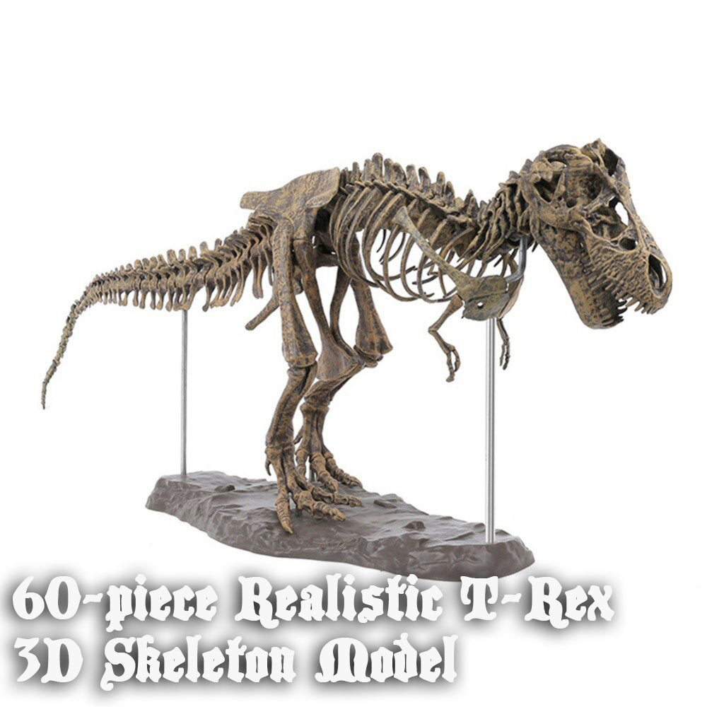 60-piece 3D T-Rex Realistic Skeleton Model