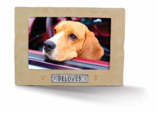 Amscan Stone Beloved Pet Picture Frame 5.75