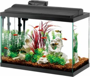 Aqueon Kit Deluxe LED Black High 20gal