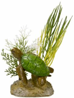 Blue Ribbon Exotic Environments Aquatic Scene with Turtle