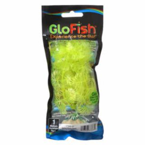 Tetra GloFish Plant, Medium Yellow *REPL 309331