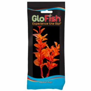 Tetra GloFish Plant, Medium Orange *REPL 309333