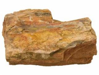 Estes Petrified Wood - Assorted Size - 25lb
