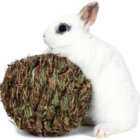 Marshall Pet Peters Woven Grass Play Ball