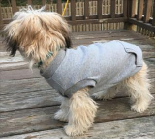 Ethical Fashion Pet Sweatshirt Gray XSmall