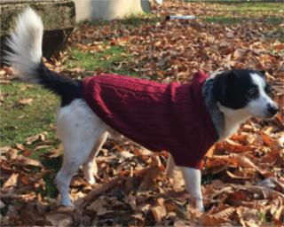 Ethical Fashion Pet Faux Fur Hooded Sweater Merlot Medium