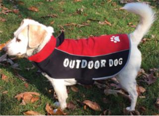 Ethical Fashion Pet All Weather Jacket Red Medium