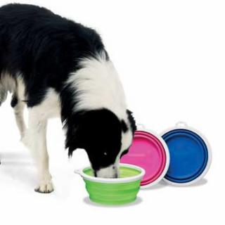 Fat Cat Silicone Travel Bowl - 3 Cup Tray