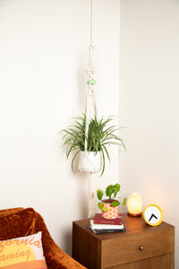 The Willow Macrame Plant Hanger