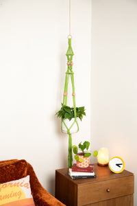 The Rosemary Macrame Plant Hanger