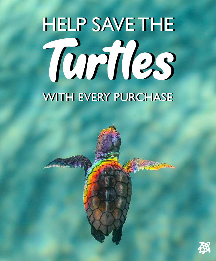 Save The Turtles | Save The Turtles | One Straw at a Time