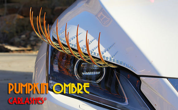 Ombré PUMPKIN CarLashes® - Special Edition