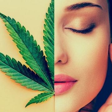 files/Cannabis-and-your-skin.jpg
