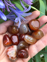 Carnelian Tumbled Stones for Motivation & Creativity