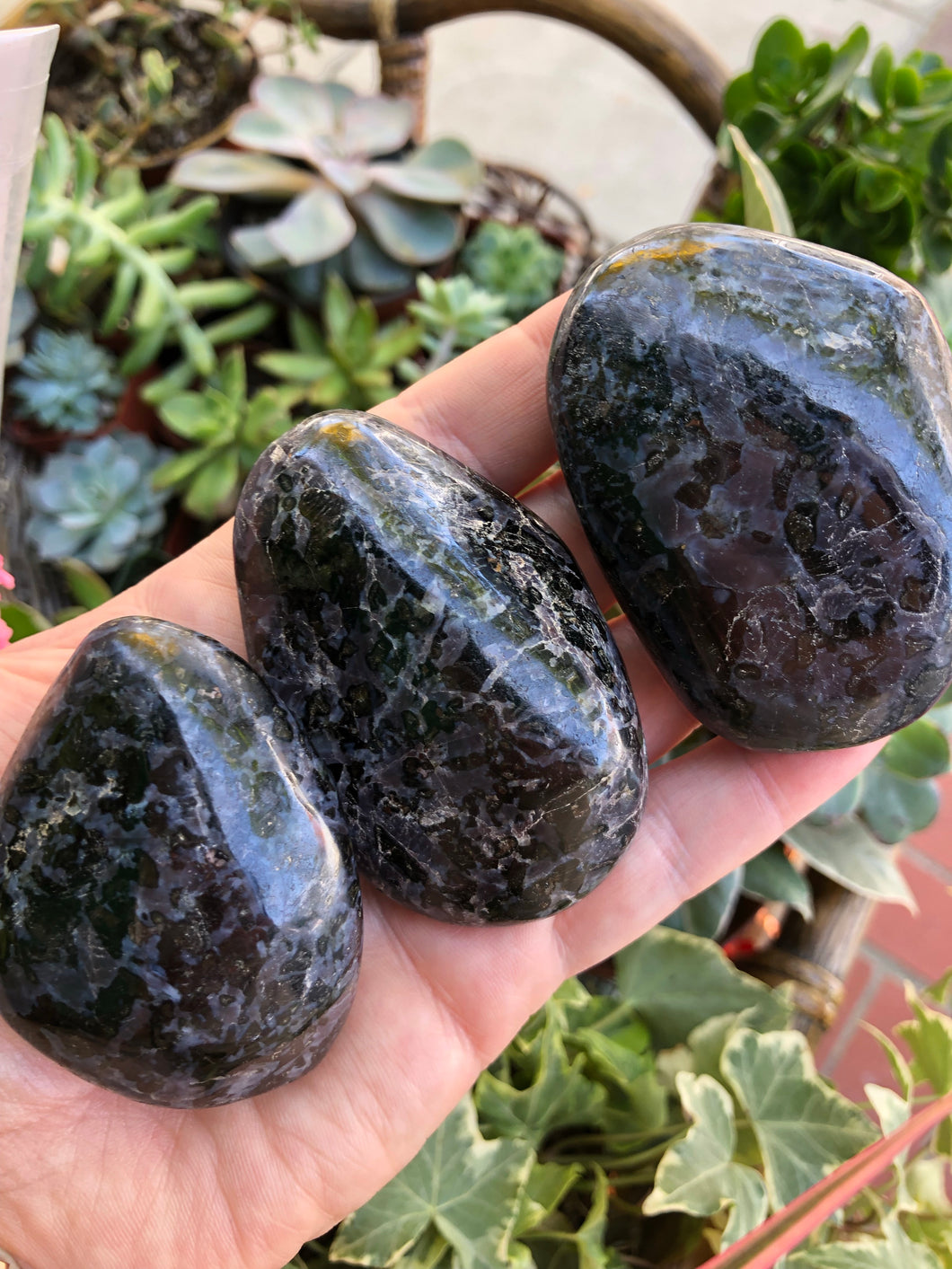 Mystic Merlinite Indigo Gabbro Palm Stone for Past Life Healing