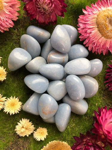Angelite for Serenity