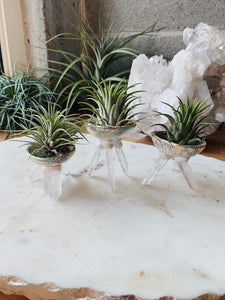 Crystal Air Planters