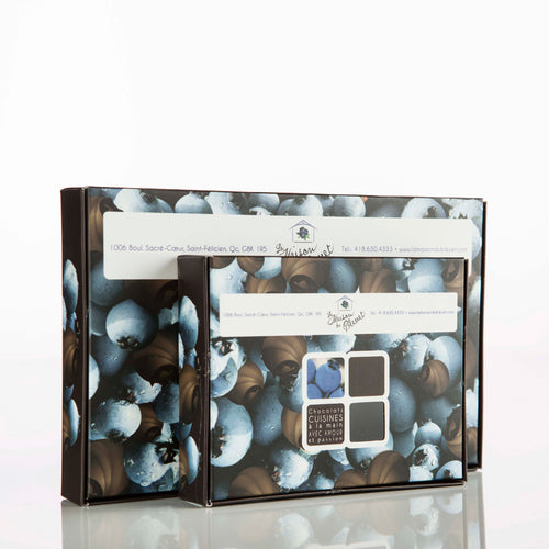 bleuets-seches-chocolat-duo