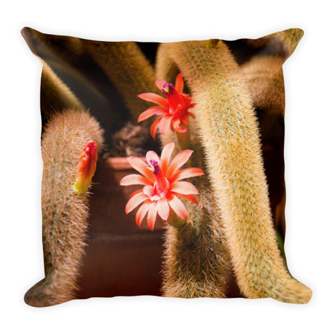 Orange Pink Cactus Flower Premium Throw Pillow