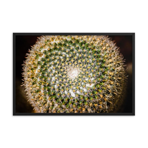 Cactus Spiral Photo Framed Print Colorful Home Decor