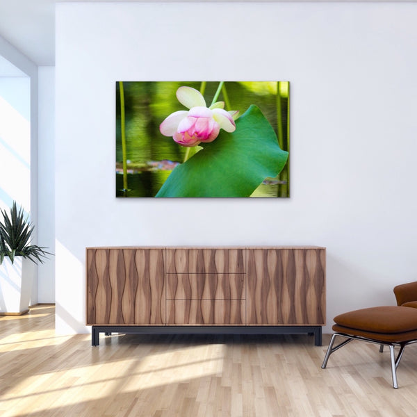 Pink Flower Water Lily Reflection Canvas Print Colorful Home Decor