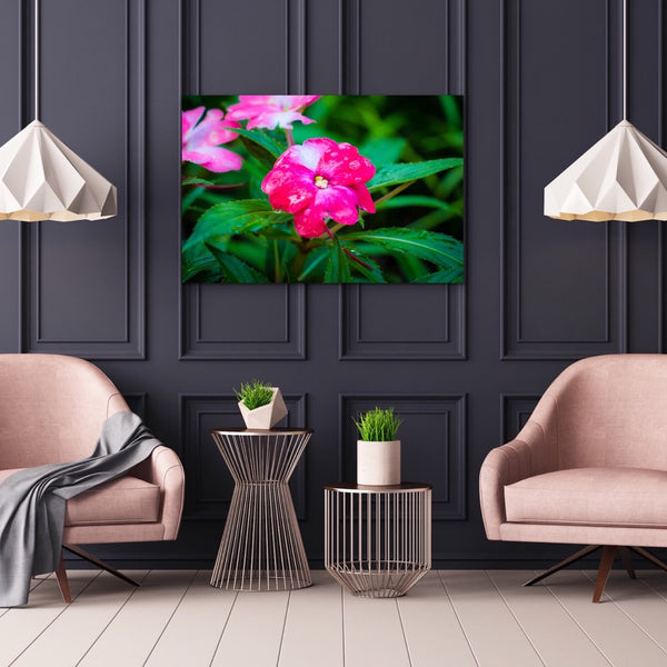 Pink Flower with Water Drops Canvas Print Wall ArtColorful Home Decor