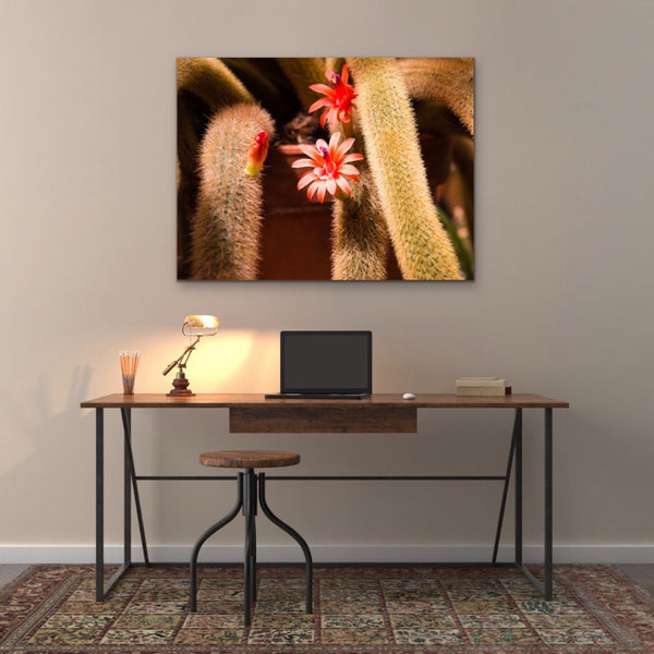 Pink Cactus Flower Canvas Print Wall Art