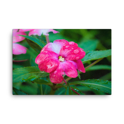 Pink Flower Water Drops Canvas Print Home Decor