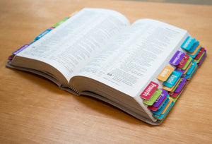 Bible Books Tabs Colorful