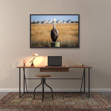 Load image into Gallery viewer, Pelican Framed Print